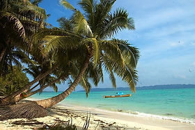 isole andamane spiaggia