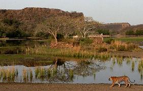 Parco di Ranthambore, animali selvatici