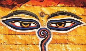 il tempo delle scimmie a Kathmandu