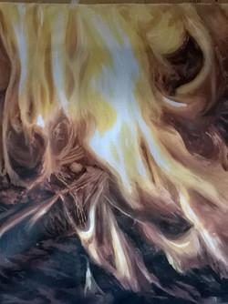 la luce e il calore trasformano per senp