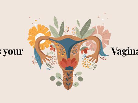 My Vaginal Flora