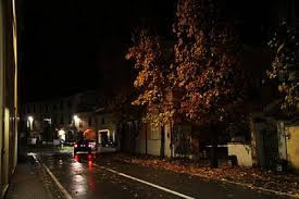 strada con foglie.jpg