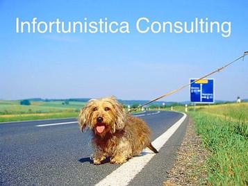 Autostrada: se investi un animale?
