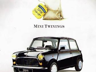 ROVER MINI TWININGS