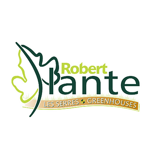 Robert Plante Logos on x2 dimensions.png