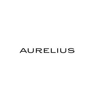 Aurelius Logos on x2 dimensions.png