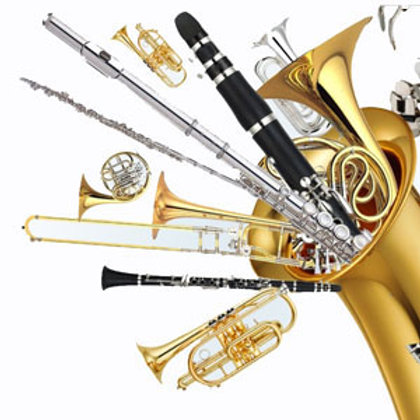 District/All State Band Audition Fee