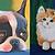 Pet Portraits 10:00-1:00pm