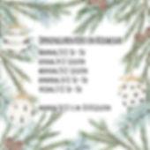 Kerst en nieuw1 copy.jpg