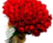 101_red0.jpg