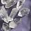 Thumbnail: Laser Crystal Quartz 2 for $10