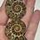 Thumbnail: Ammonite Pairs