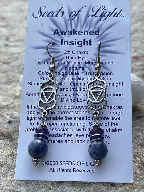 Awakened Insight earrings