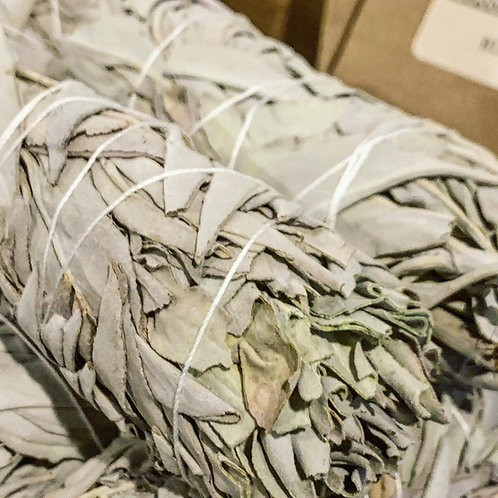 BULK price White Sage