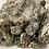 Thumbnail: BULK price Lavender and Sage