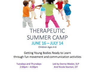 Therapeutic Summer Camp