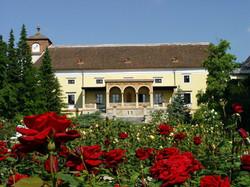 Hotel Aussicht Rosarium