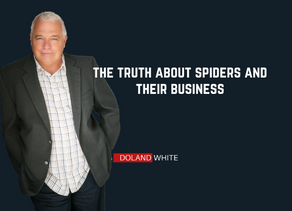 The Truth About Spiders and Their Business