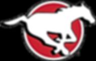 Calgary Stampeders Logo.png