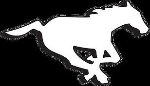 CGY Logo Present.png