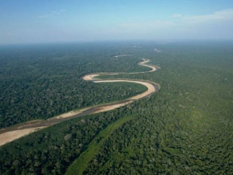 THREATS TO THE AMAZON