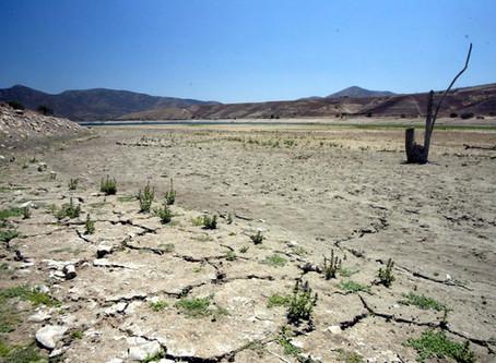 PRIVATIZACIÓN DEL AGUA: EL AGUA COMO OBJETO EN CHILE