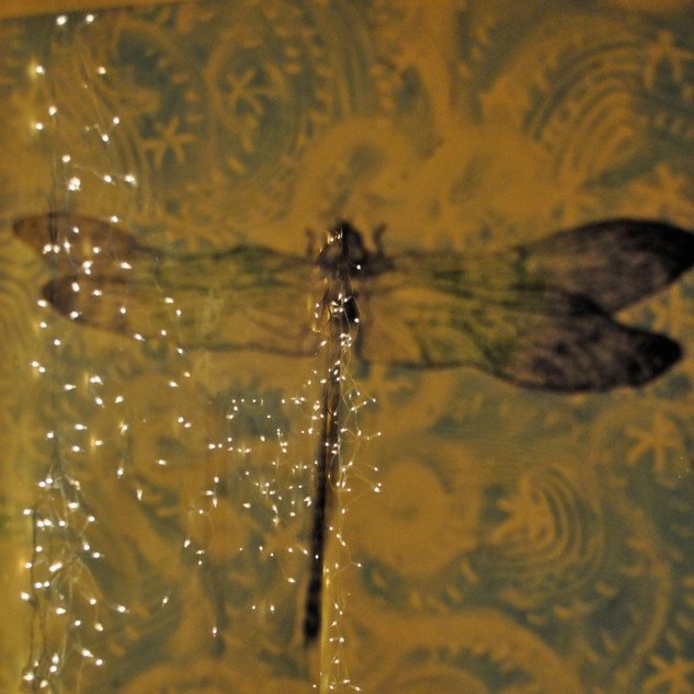Ephemeral Dragonfly