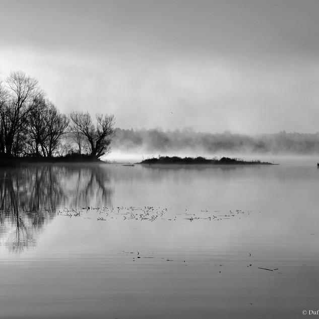 Mist on the Bay