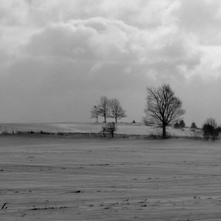 Winter in Ogden