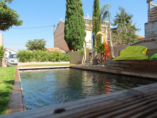 piscine bois intégrée au jardin