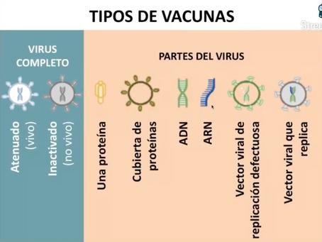 ANALISIS COMPLETO de las Diferentes Vacunas - Dra. Karina Acevedo Whitehouse