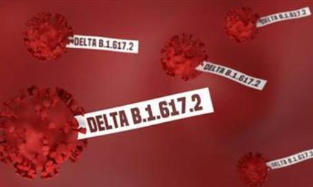 Variante Delta: inmunidad natural 700% mejor que la vacuna