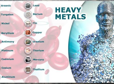 Glutation y Eliminacion de Metales Pesados