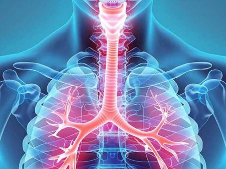 5  estudios verifican una reducción en los niveles de oxígeno en la sangre al usar Mascarilla
