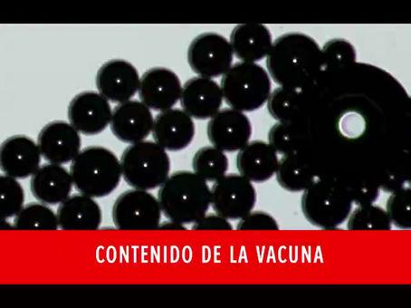 Doctora Zandre Botha revela Impactantes IMAGENES de Muestras de Sangre de Vacunados