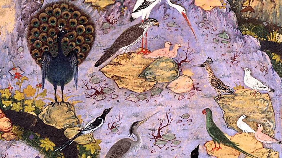 canticle of the birds - attar.jpg