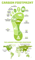 Understand what makes up our Carbon Footprint