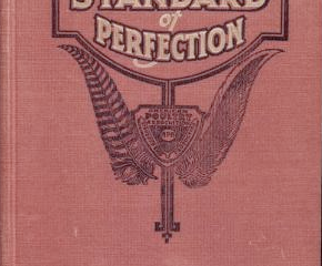 The Standard of Perfection