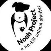 Noah project logo 2.jpg