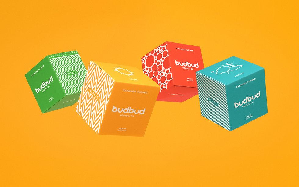 BudBud_Package_Header2_NoBlur.jpeg
