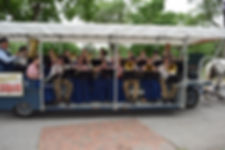 2018-08 Band BU DSC_0117.JPG