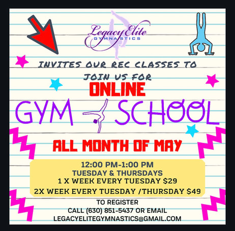 Online Gym School!
