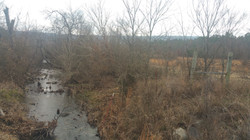 40 Acres with Creek