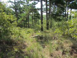 9 Acres K-Trail