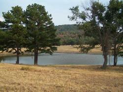157 Acre Ranch