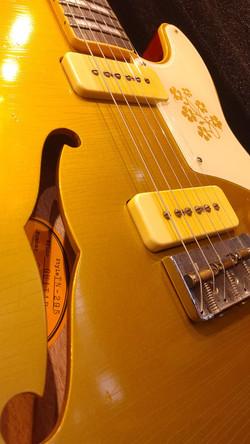 Bruno Guitars TN-295