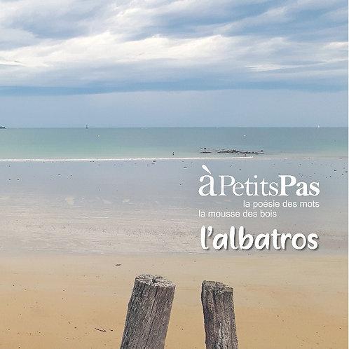 """1 CD """"l'Albatros"""" 15€ + 4€ de frais de port"""