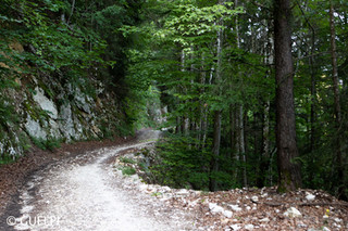 200709_Repo_Solothurn_WM-13.jpg