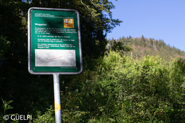 200709_Repo_Solothurn_WM-30.jpg