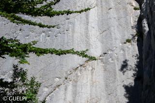 200709_Repo_Solothurn_WM-58.jpg